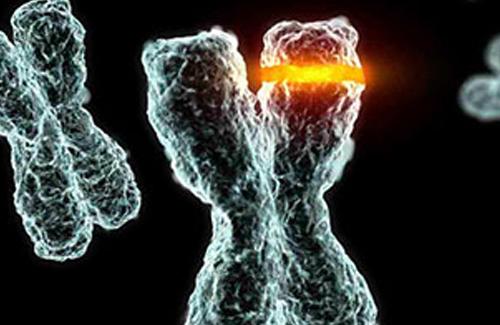 Cours de Biologie cellulaire et moléculaire