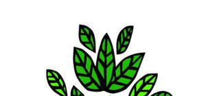 Phytosociologie : Etude de la Végétation