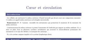 Le coeur et la circulation sanguine