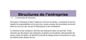 Les structures de l'entreprise