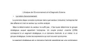l'analyse de l'environement et diagnostic externe