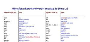 Adjectifs & adverbes intervenant en 6ème LV1