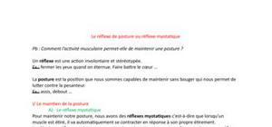 Le réflexe de posture ou réflexe myotatique