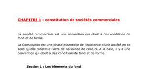 Constitution de sociétés commerciales