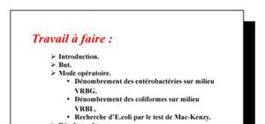 TP N° 2 microbiologie alimentaire