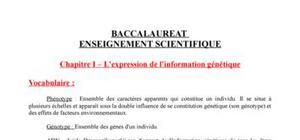 SVT 1ère ES - Du Génotype au Phénotype