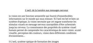 L'oeil: de la lumière aux messages nerveux