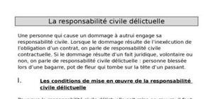 La responsabilité civile delictuelle