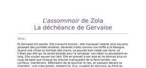 Lecture analytique sur l'Assommoir de Zola