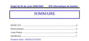 Rapport de Projet de fin de cycle IG 2009