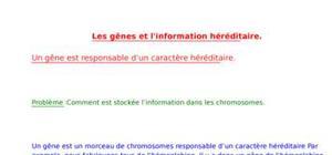 Les gênes et l'information héréditaire