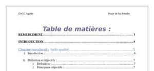 Rapport de stage dans axa assurance - Exemple table des matieres ...