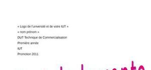 Exemple de rapport de stage DUT TC sur la vente