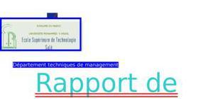 Rapport de stage assurance axa