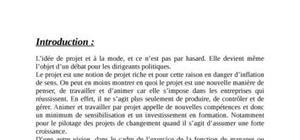 Théorie d'organisation et la gestion de projet, cas pratique sur méditel au maroc