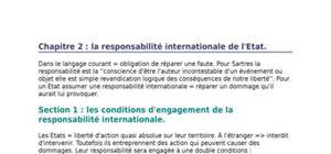 La responsabilité internationale de l'etat.