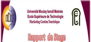 Rapport de stage royal mirage hotel