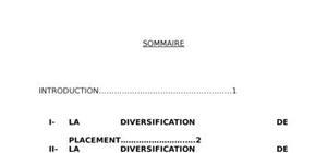 Les strategies de diversification des entreprises en afrique
