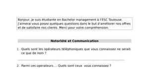 Exemple d'un questionnaire