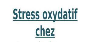 Stress oxydatif chez les végétaux causes effets et protection