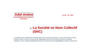 La société en nom collectif (snc) (sa)