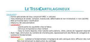 Le tissu cartillagineux