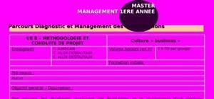 Culture bisness 4eme année en management des organosation