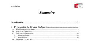 Marketing point de vente du groupe go sport