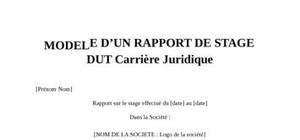 Rapport de Stage DUT Carrières Juridiques