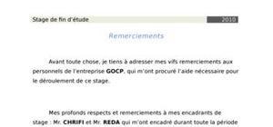 Rapport de stage : etude des chaines de régulation au sein du maroc chimie