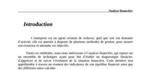 Analyse financière et diagnostic stratégique de l'entreprise