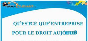 Notion d'Entreprise en Droit : Cours Droit Terminale STG