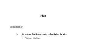 Finance local a l'intérnationnal pour les entreprises