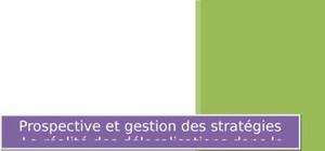 Prospective et gestion des stratégies :la réalité des délocalisations dans le monde