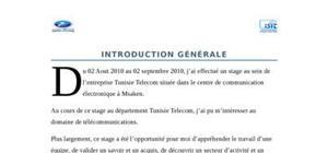 Guide de la rédaction du rapport de stage, par Emmanuelle