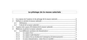 Le pilotage de la masse salariale