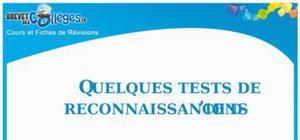 Test de reconnaissance des ions : Fiche De Révision Brevet