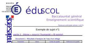 Sujet 0 L - ES (SVT) : Exemple n° 1