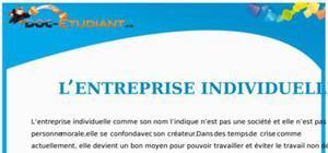 L'Entreprise Individuelle : Cours Droit Terminale STG