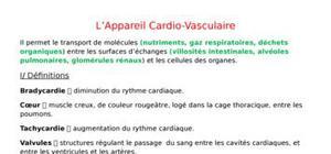 L'appareil cardio-vasculaire