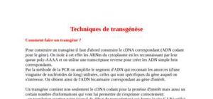 Les techniques de transgénèse