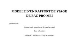 Rapport de stage bac pro mei