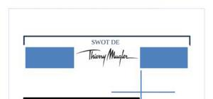 Thierry mugler - annalyse swot