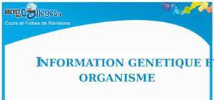 Information génétique et organisme