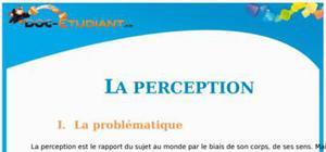 La Perception : Cours Terminale L