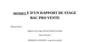 Rapport de Stage Bac Pro Vente