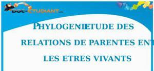 Phylogénie : Cours Terminale S