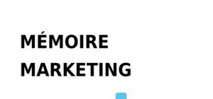 Memoire marketing lessive