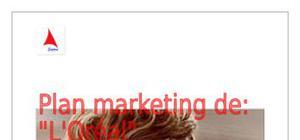 L'oréal plan marketing
