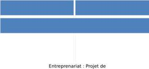 Projet d'entrepreunariat